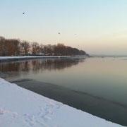 Winteridylle Dezember '10 (Quelle: eigenes Werk)