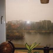 Blick aus meinem Kinderzimmer auf den Appelhoffweiher, '92