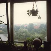 Blick aus meinem Kinderzimmer auf den Appelhoffweiher, '93