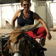 Langsam sich mit der Eselskutsche treiben lassen- Abenteuerurlaub in Abéné,  Casamance, dem grünen Süden Senegals