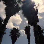 Der Blick zum Himmel
