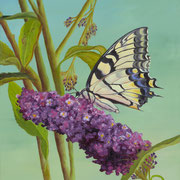 Lunchtime   -   Oil  -   Sold - Prints Available