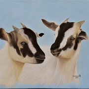 """""""Just Kidding""""   Soft Pastel   Available"""