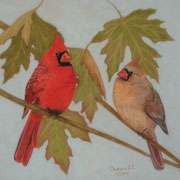 Cardinal Pair   -   Soft Pastel   -  Available