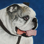 """""""Dudley""""   Commission"""