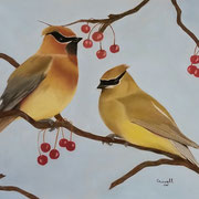 Cedar Waxwings   -   Soft Pastel   -   Available