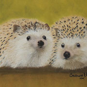 """Prickly Pair""        Available"