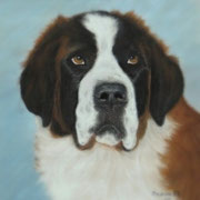 St. Bernard   Available