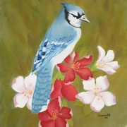 Red, White and Blue (Jay)   -   Soft Pastel   -  Available