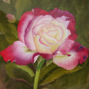 Summer Rose   -   Soft Pastel   -  Available