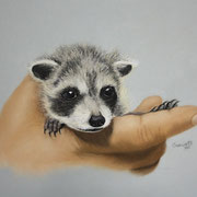 """""""The Rescue""""     Soft Pastel"""
