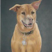 """""""Bailey""""     Commission"""