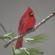 Christmas Colors   -   Soft Pastel   -  Sold - Prints Available