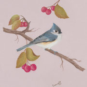 Tufted Titmouse II   -   Soft Pastel   -  Sold   -   Prints Available