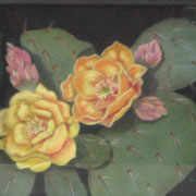 Cactus Glow   -   Soft Pastel   -  Sold