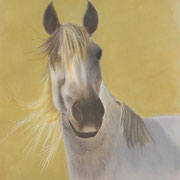 """Andalucian Mare""  -  16'X20""  Framed  -  Available"