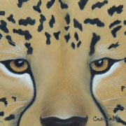 """Cheetah Eyes""     Soft Pastel   Sold"
