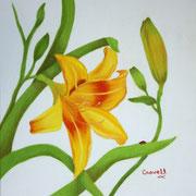 Window View   -   Watercolor  -  Unavailable