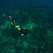 Diving with Taino Divers