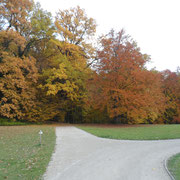 Herbst in der Eremitage