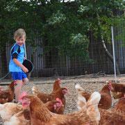 Rund ums Huhn auf dem Eschenhof