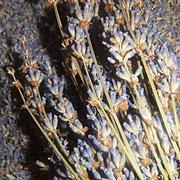 Lavendel Kissen, 9 euro, Räucherware