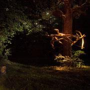 Baumkranz, Lange Nacht der Museen 2007