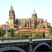 Ref. 323 (Catedral de Salamanca)