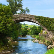 Ref. 299 (Río Miera - Cantabria)