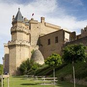 Ref. 257 (Castillo de Olite - Navarra)