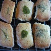 ハーブクッキー3種 レモンバーム ローズマリー フェンネル