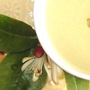 レモンの花茶
