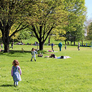 Viel Spass für Familien im Grüttpark