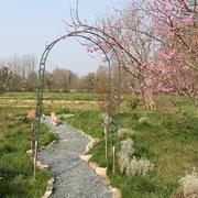 Vue sur le jardin @les_jardins_de_koantiz