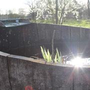 les_jardins_de_koantiz