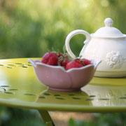 Les premières fraises de l'exploitation@les_jardins_de_koantiz