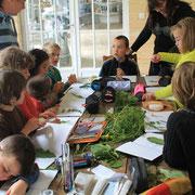 création d'un herbier avec des cp-ce1@les_jardins_de_koantiz