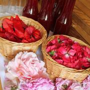 confection de sirops aux fleurs@les_jardins_de_koantiz