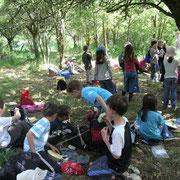 accueil scolaire sur l'exploitation@les_jardins_de_koantiz
