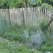 une partie du jardin pédagogique@les_jardins_de_koantiz