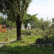 vue du jardin@les_jardins_de_koantiz