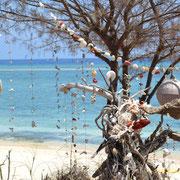 The snorkeling paradise Gili Meno