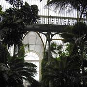 1844年から4年をかけて建築されたパーム・ハウスは熱帯雨林と同様の環境を作っています