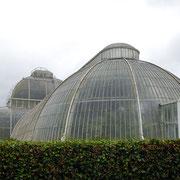 全長110mの大温室です
