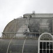 ヴィクトリア時代のガラス建築としても貴重な建物になっています