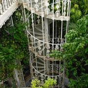 鉄骨のらせん階段を登ると温室内部を見下ろして歩けるようになっています。手すりの装飾もとてもきれいです