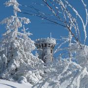 Schwarzwald-Winter
