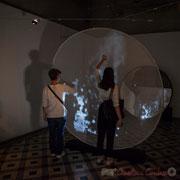 1 Métamorphy. Scenocosme : Grégory Lasserre & Anaïs met den Ancxt. Octobre numérique, Palais de l'Archevêché, Arles