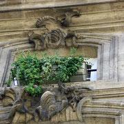 Autre symbolisme du XVIIIème siècle, sculptures végétales en pierre. Bordeaux. Reproduction interdite - Tous droits réservés © Christian Coulais
