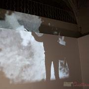 2 Ombres métamorphiques. Octobre numérique, Palais de l'Archevêché, Arles